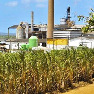 Productos químicos para la industria azucarera y destilerías